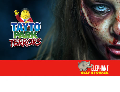 The Winners of Halloween at Tayto Park With Elephant Self Storage