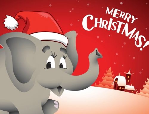 Elephant Self Storage Christmas Hours